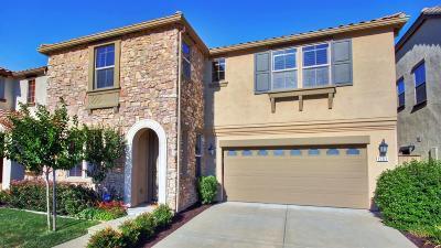 Folsom Single Family Home For Sale: 1563 Ballou Circle