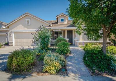 Sacramento Single Family Home For Sale: 69 Cafaro Circle