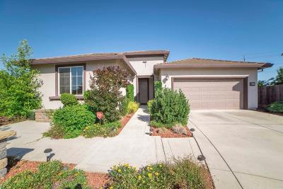 Sacramento Single Family Home For Sale: 9578 Blue Mountain Way