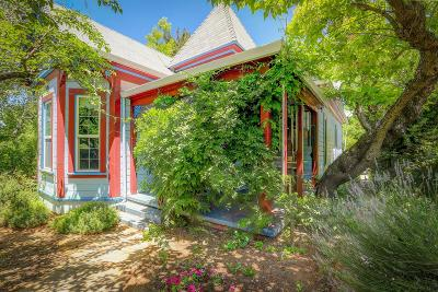 Grass Valley Single Family Home For Sale: 602 West Main Street