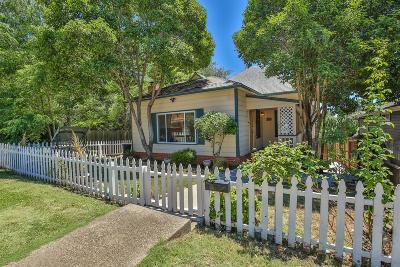 Auburn Single Family Home For Sale: 206 Foresthill Avenue