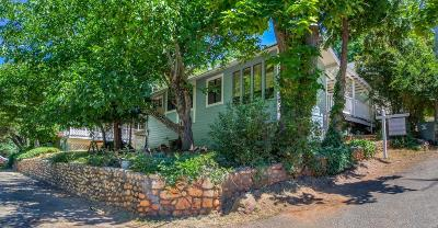 Colfax Single Family Home For Sale: 204 Marvin Avenue