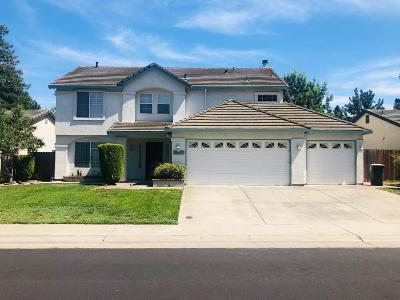 Elk Grove Single Family Home For Sale: 9327 Castleview Drive