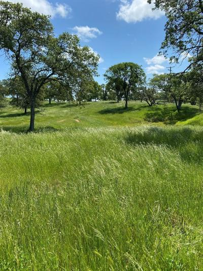 Amador County Commercial Lots & Land For Sale: 8500 Deer Ridge Ln