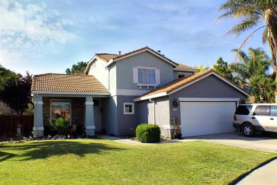 Newman Single Family Home For Sale: 1117 Pintail Court