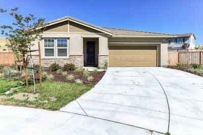 Patterson Single Family Home For Sale: 9695 Cabernet Court