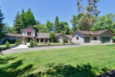 Sacramento Single Family Home For Sale: 500 Morse Avenue