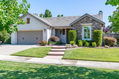 Sacramento Single Family Home For Sale: 262 Mill Valley Circle