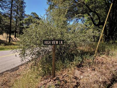 Colfax Residential Lots & Land For Sale: 1 High View Lane