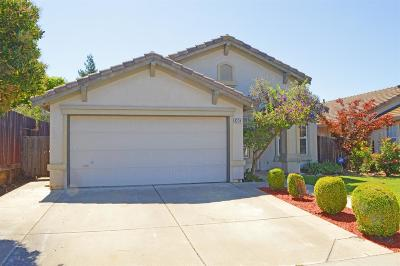 Elk Grove Single Family Home For Sale: 8234 Park Front Way