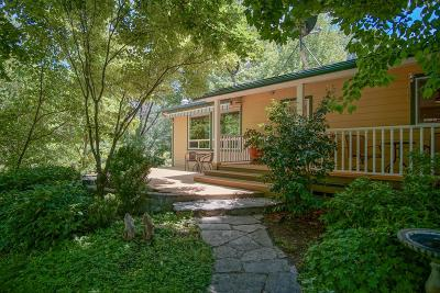 Nevada City Single Family Home For Sale: 19330 Oak Tree Road