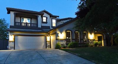 El Dorado County Single Family Home For Sale: 226 Gunston Court