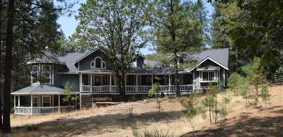 Grass Valley Single Family Home For Sale: 14920 Chattering Pines Road