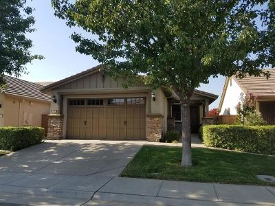 Elk Grove Single Family Home For Sale: 7805 Barnsley Way