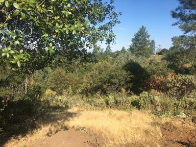 Sutter Creek Residential Lots & Land For Sale: 15640 Meadowlark Lane