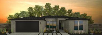Denair Single Family Home For Sale: 3305 Kingsburg Court