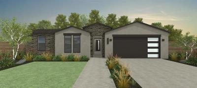 Denair Single Family Home For Sale: 3317 Kalmar Lane