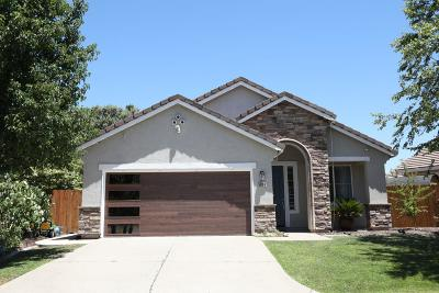 Antelope Single Family Home For Sale: 5809 Blue Beech Ct