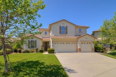 Elk Grove Single Family Home For Sale: 9465 Triathlon Lane
