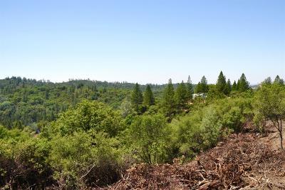 Sutter Creek Residential Lots & Land For Sale: 14190 Shake Ridge