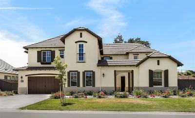 El Dorado Hills Single Family Home For Sale: 922 Candlewood Drive