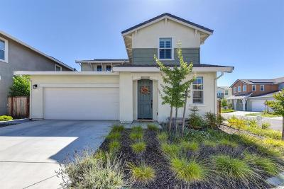 Elk Grove Single Family Home For Sale: 9600 Oak Reserve Lane