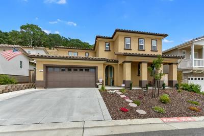 El Dorado Hills Single Family Home For Sale: 951 Via Treviso