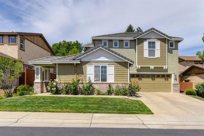 Folsom Single Family Home For Sale: 772 Bluestone Circle