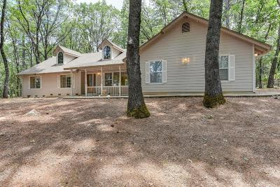 Nevada City Single Family Home For Sale: 18373 Goa Way