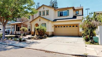 Turlock Single Family Home For Sale: 302 Meandering Lane