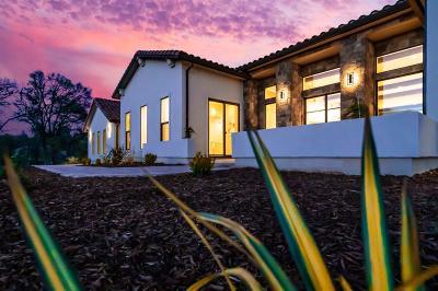Auburn Single Family Home For Sale: 12951 Austin Forest Circle