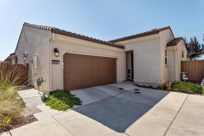 Sacramento Single Family Home For Sale: 4081 Arco Del Paso Lane
