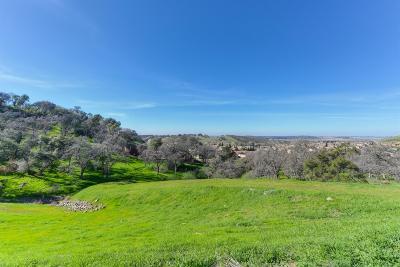El Dorado Hills Residential Lots & Land For Sale: 1062 Via Treviso