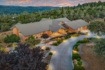 Nevada County Single Family Home For Sale: 11280 Dawn Lane