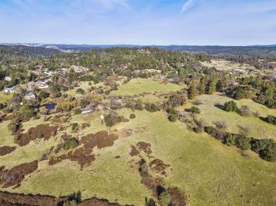 Placerville Single Family Home For Sale: 1820 State Highway 49