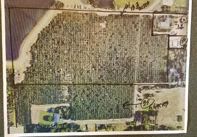 Loomis CA Residential Lots & Land For Sale: $1,650,000