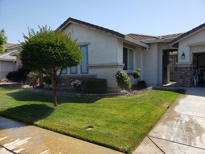 Elk Grove Single Family Home For Sale: 9297 West Fox Springs Way