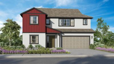 Sacramento Single Family Home For Sale: 3600 Rynders Way