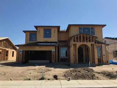 Manteca Single Family Home For Sale: 2716 Diablo View Drive #Lot 9
