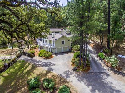 Grass Valley Single Family Home For Sale: 13724 Perimeter Road