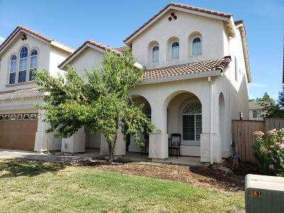 Elk Grove Single Family Home For Sale: 9524 North Misty River Way