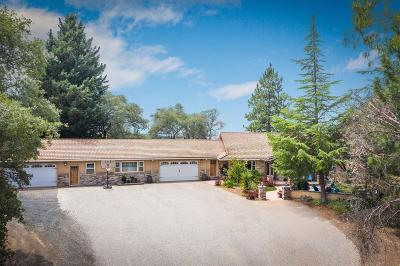 Grass Valley Single Family Home For Sale: 16035 Running Springs Road