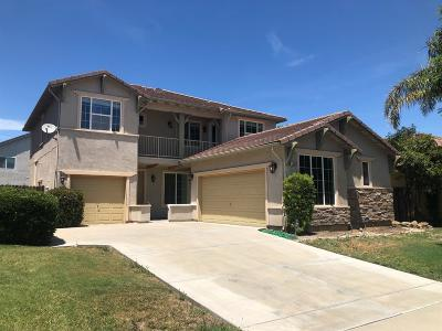 Patterson Single Family Home For Sale: 1445 Cliff Swallow Drive