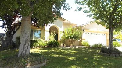 Elk Grove Single Family Home For Sale: 5709 Birch Point Court