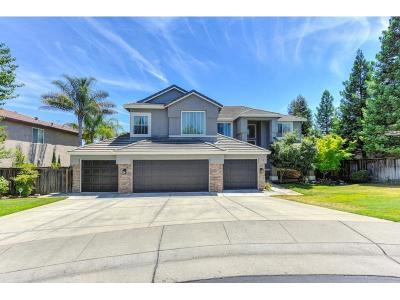 Rocklin Single Family Home For Sale: 5210 Silver Peak Lane