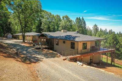 Grass Valley Single Family Home For Sale: 12701 Judd Lane