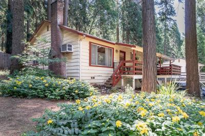 Pollock Pines Single Family Home For Sale: 2861 Laurel Drive