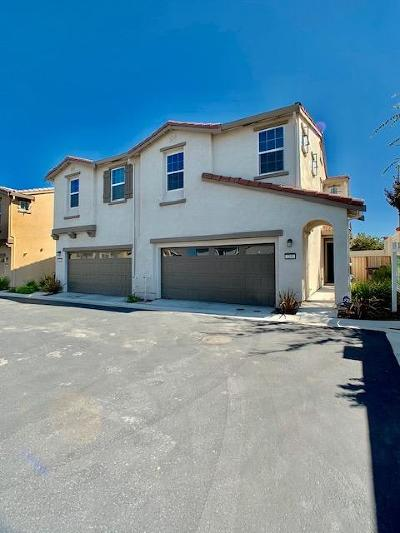 Tracy Single Family Home For Sale: 3292 Overland Lane