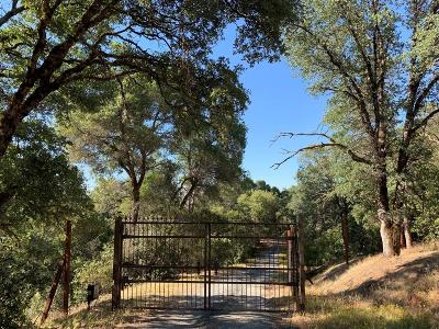 Placerville Residential Lots & Land For Sale: 1840 Red Fox Road