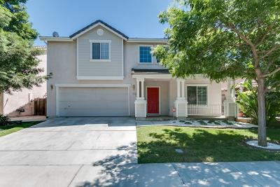 Patterson Single Family Home For Sale: 1136 Tern Way